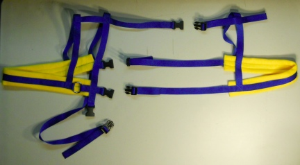 blue goat harness yellow 1