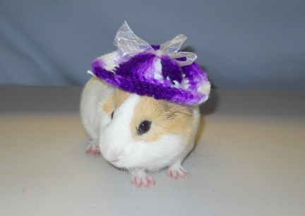Damsel in her New Hat