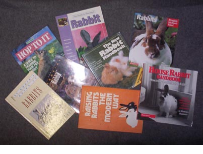 Rabbit Books 2006-03-31.jpg