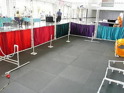 Indoor Rabbit Agility Course
