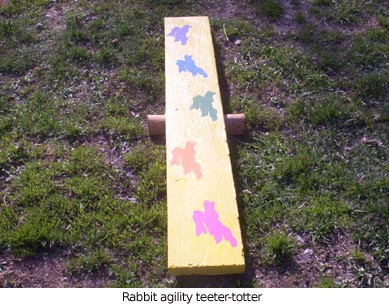Rabbit-teeter-totter 2005-04-29.jpg