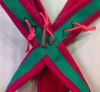 Multipurpose Sled Dog Harness Green/Red close up